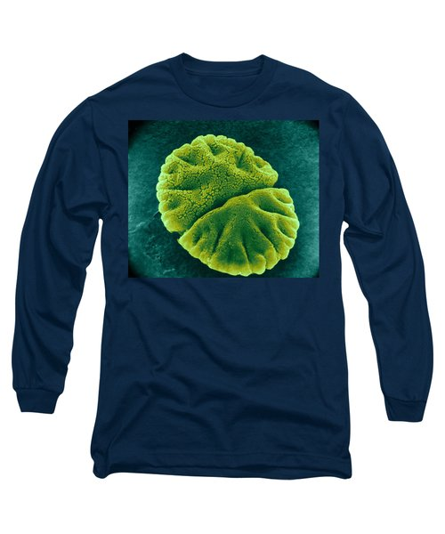 Long Sleeve T-Shirt featuring the photograph Micrasterias Angulosa, Algae, Sem by Science Source