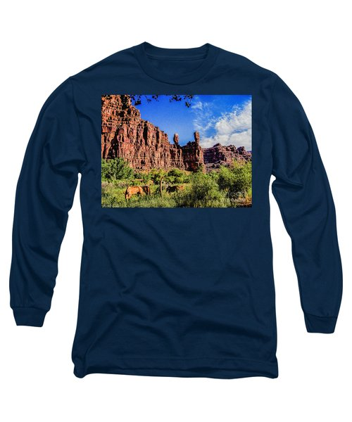 Private Home Canyon Dechelly Long Sleeve T-Shirt by Bob and Nadine Johnston