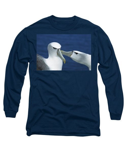 White-capped Albatrosses Courting Long Sleeve T-Shirt by Tui De Roy