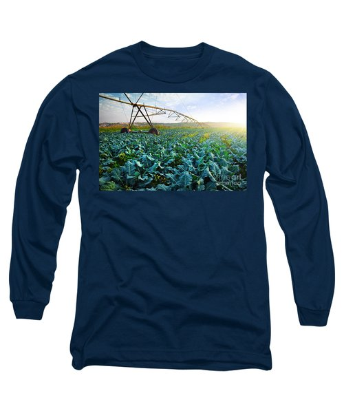 Cabbage Growth Long Sleeve T-Shirt by Carlos Caetano