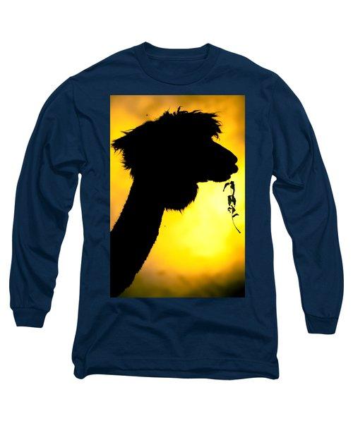Endless Alpaca Long Sleeve T-Shirt by TC Morgan