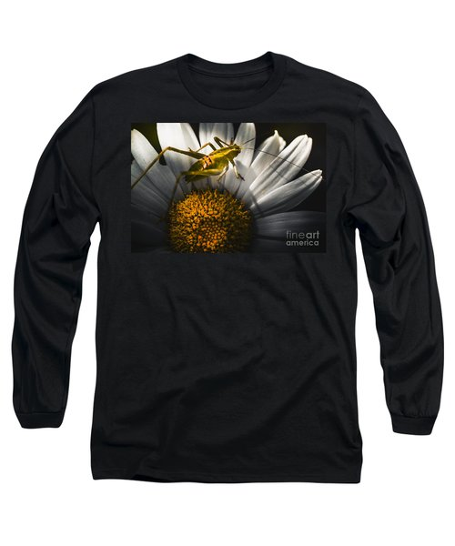 Australian Grasshopper On Flowers. Spring Concept Long Sleeve T-Shirt by Jorgo Photography - Wall Art Gallery