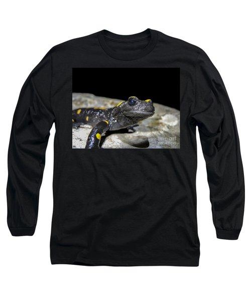 Fire Salamander Salamandra Salamandra Long Sleeve T-Shirt by Shay Levy