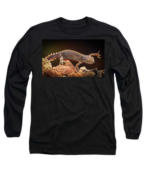 Alpine Newt Long Sleeve T-Shirt by Dirk Ercken