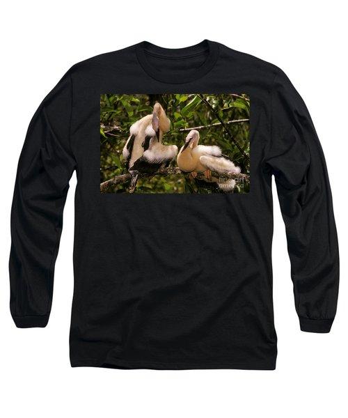 Anhinga Chicks Long Sleeve T-Shirt by Ron Sanford