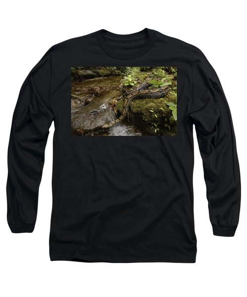 Boa Constrictor Crossing Stream Long Sleeve T-Shirt by Pete Oxford