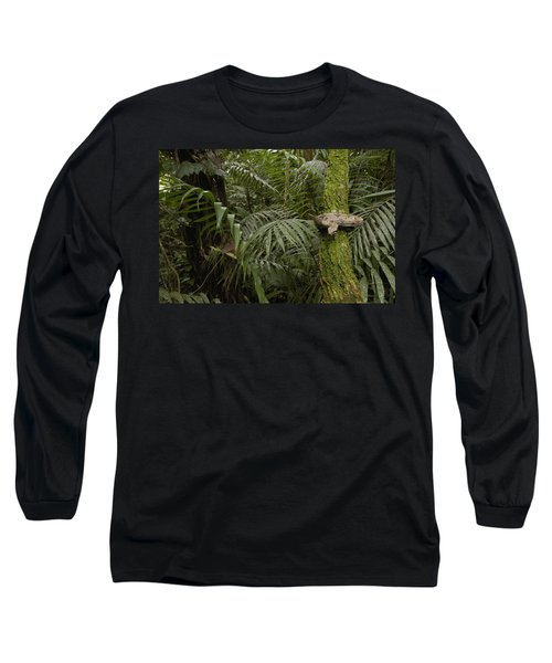 Boa Constrictor In The Rainforest Long Sleeve T-Shirt by Pete Oxford