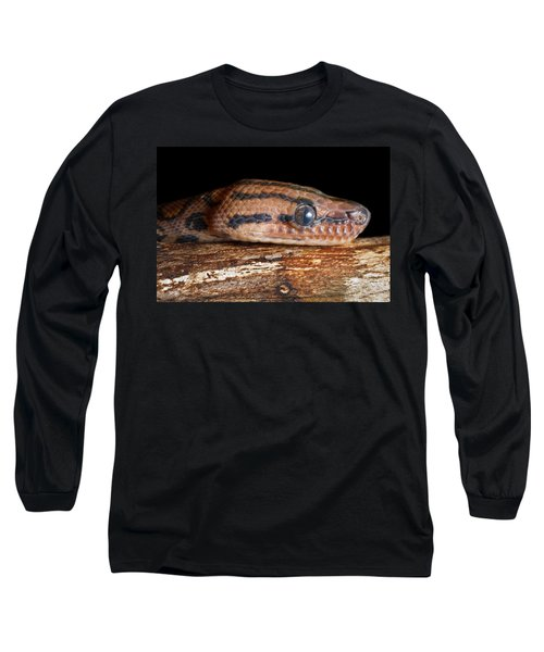 Long Sleeve T-Shirt featuring the photograph Brazilian Rainbow Boa Epicrates Cenchria by David Kenny