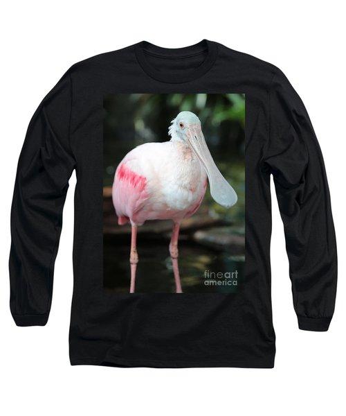 Friendly Spoonbill Long Sleeve T-Shirt by Carol Groenen