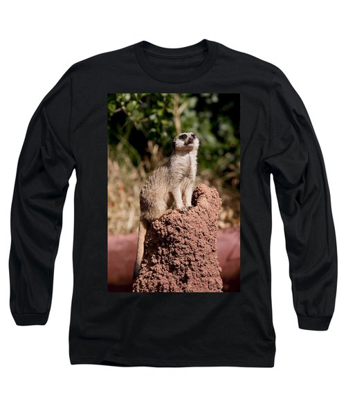 Lookout Post Long Sleeve T-Shirt by Michelle Wrighton