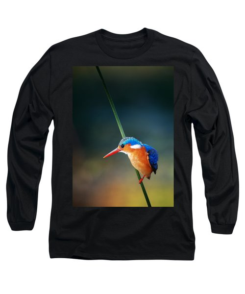 Malachite Kingfisher Long Sleeve T-Shirt by Johan Swanepoel