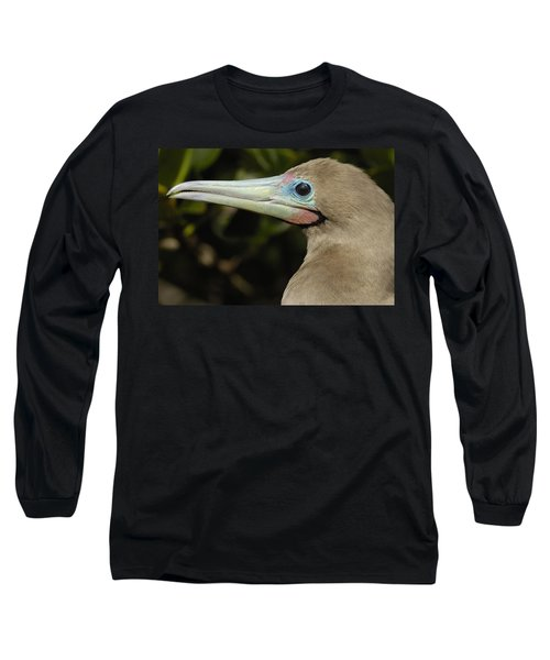 Red-footed Booby Close Up Galapagos Long Sleeve T-Shirt by Pete Oxford
