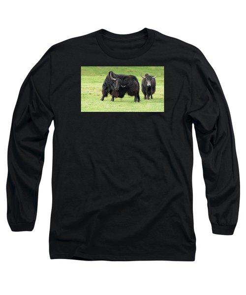 Yaketty Yak Long Sleeve T-Shirt by Liz Leyden