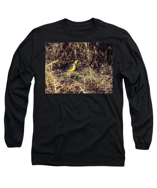 Western Meadowlark Long Sleeve T-Shirt by Steven Ralser