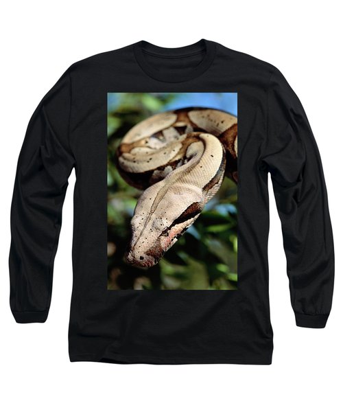 Boa Constrictor Boa Constrictor Long Sleeve T-Shirt by Claus Meyer