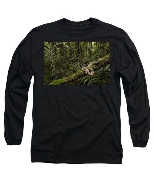 Boa Constrictor Boa Constrictor Coiled Long Sleeve T-Shirt by Pete Oxford
