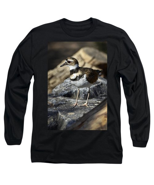 Killdeer Long Sleeve T-Shirt by Saija  Lehtonen
