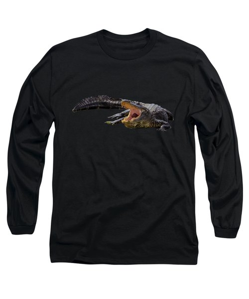 Alligator In Florida Long Sleeve T-Shirt by Zina Stromberg