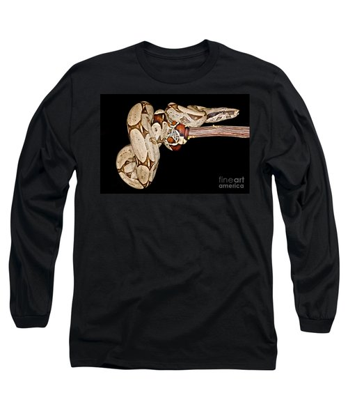 Boa Constrictor Long Sleeve T-Shirt by Dant� Fenolio