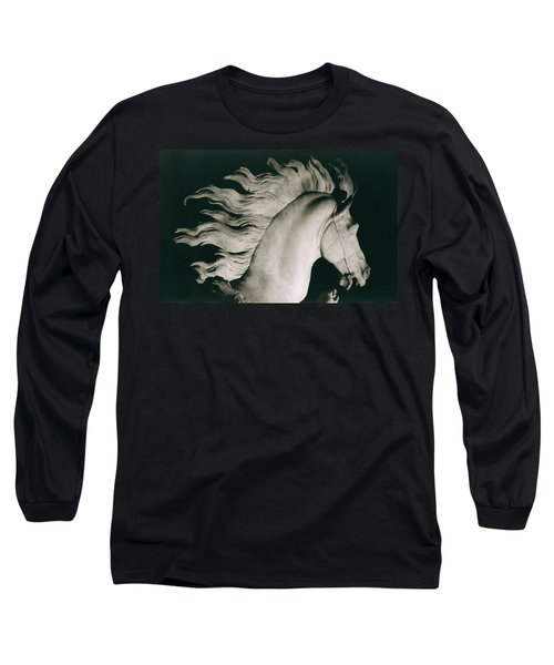 Horse Of Marly Long Sleeve T-Shirt by Coustou