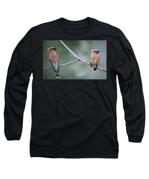Looking To The Right Long Sleeve T-Shirt by Omer Vautour
