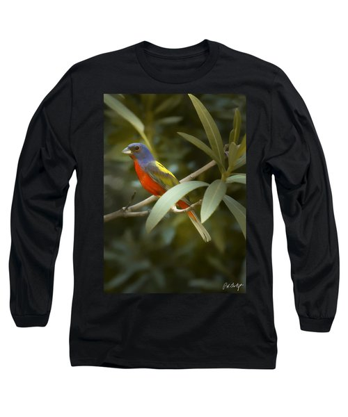 Painted Bunting Male Long Sleeve T-Shirt by Phill Doherty