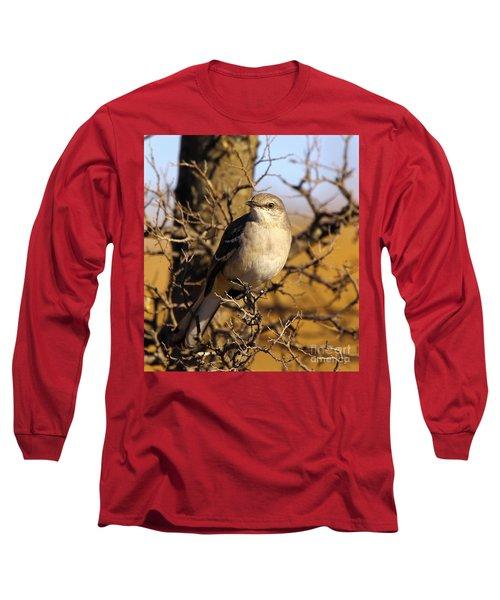 Common Mockingbird Long Sleeve T-Shirt by Robert Frederick