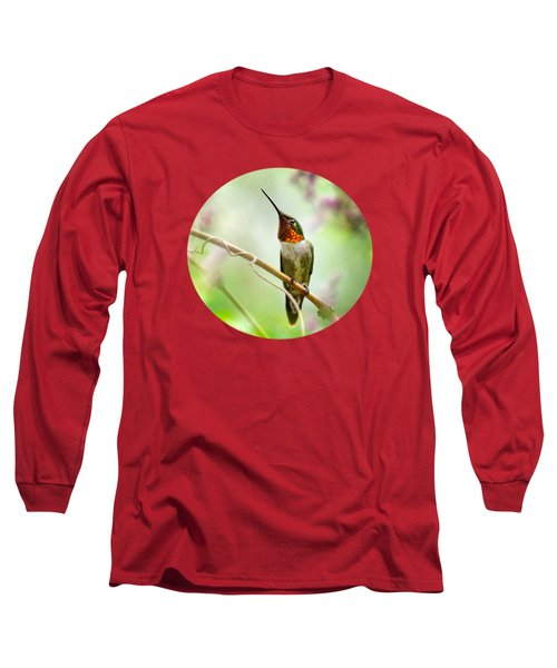 Hummingbird Looking For Love Long Sleeve T-Shirt by Christina Rollo