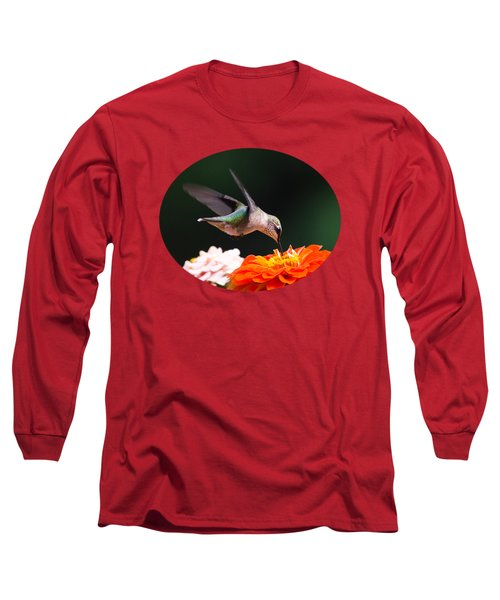 Hummingbird In Flight With Orange Zinnia Flower Long Sleeve T-Shirt by Christina Rollo