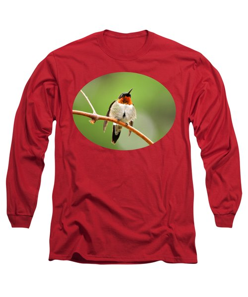 Male Ruby-throated Hummingbird Long Sleeve T-Shirt by Christina Rollo