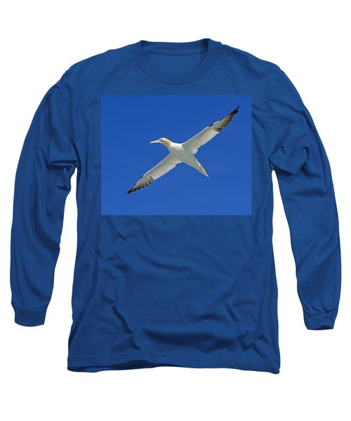Northern Gannet Long Sleeve T-Shirt by Tony Beck