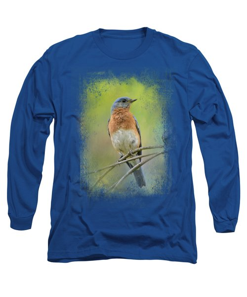 Bluebird On A Spring Day Long Sleeve T-Shirt by Jai Johnson