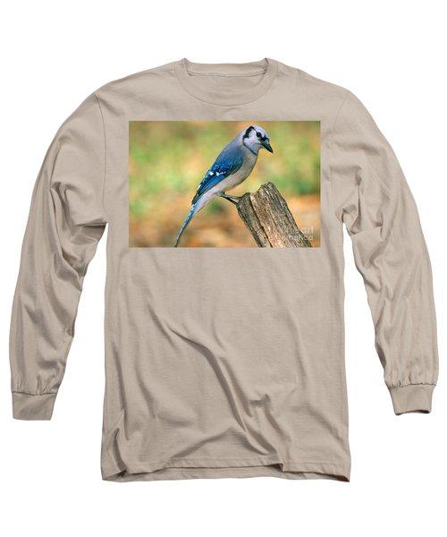 Blue Jay Long Sleeve T-Shirt by Millard H. Sharp