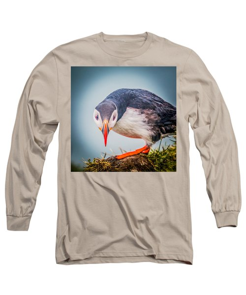 Atlantic Puffin Fratercula Arctica Long Sleeve T-Shirt by Panoramic Images