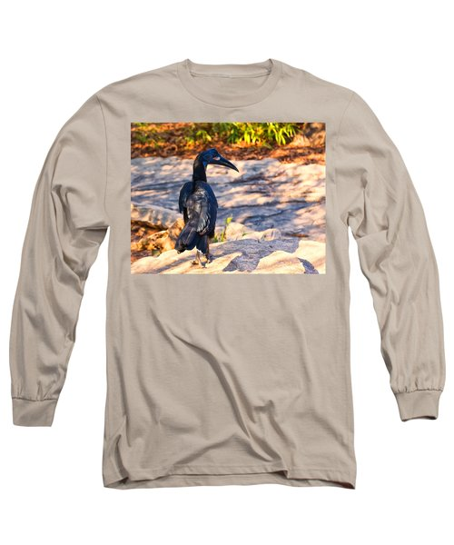 Abyssinian Ground Hornbill Long Sleeve T-Shirt by Chris Flees