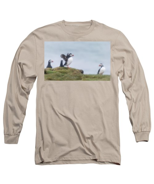 Atlantic Puffins Fratercula Arctica Long Sleeve T-Shirt by Panoramic Images