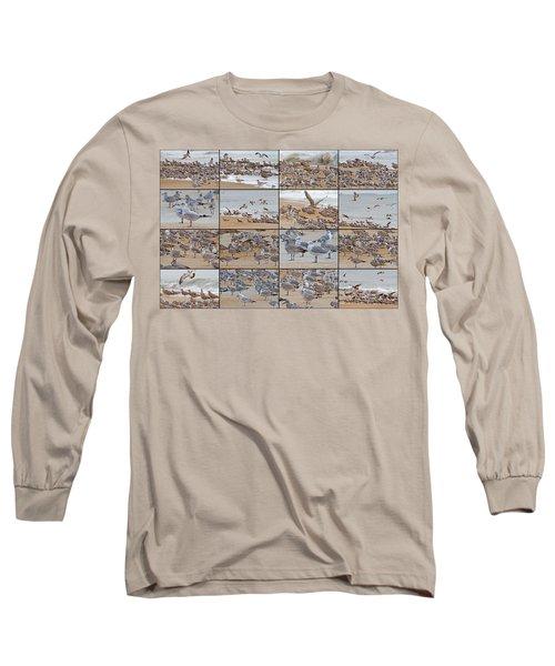 Birds Of Many Feathers Long Sleeve T-Shirt by Betsy Knapp