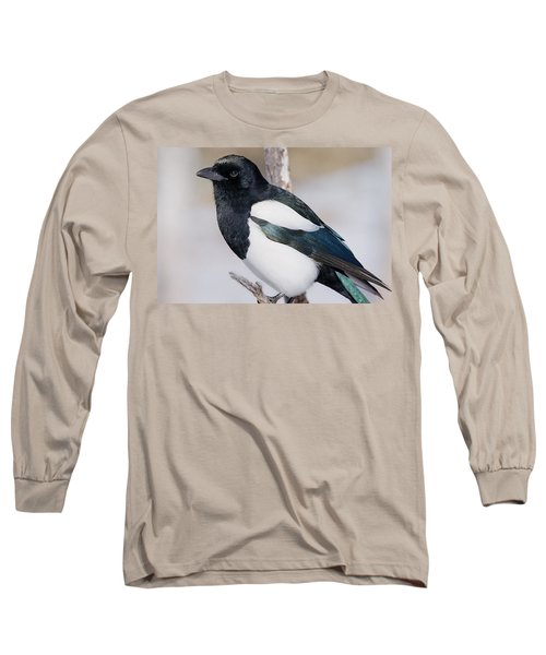 Black-billed Magpie Long Sleeve T-Shirt by Eric Glaser