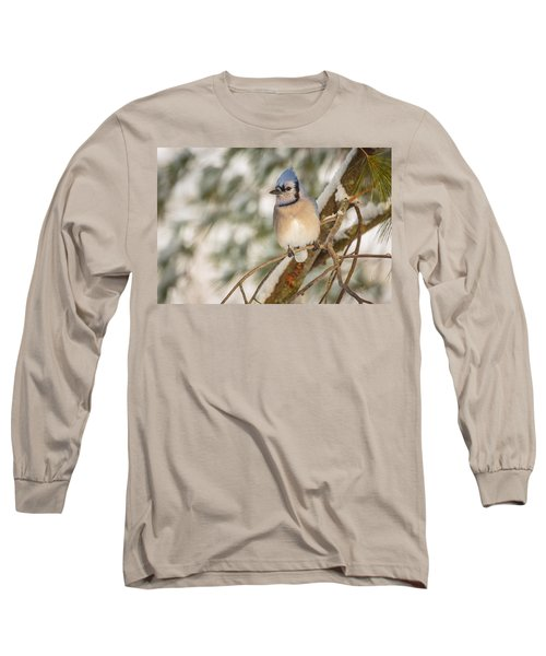 Blue Jay Long Sleeve T-Shirt by Everet Regal