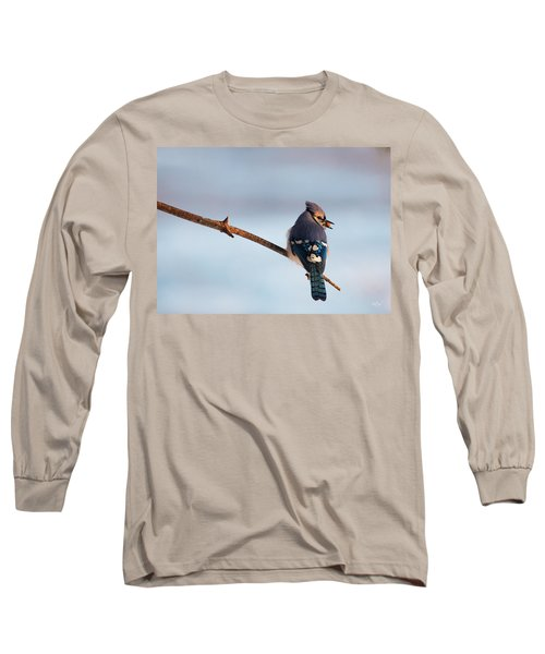 Blue Jay With Nuts Long Sleeve T-Shirt by Everet Regal