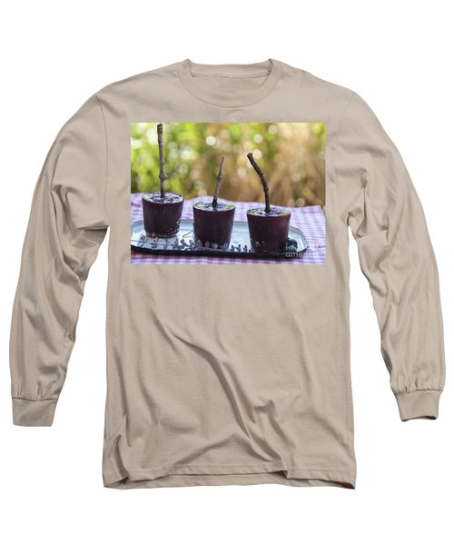 Blueberry Ice Pops Long Sleeve T-Shirt by Juli Scalzi