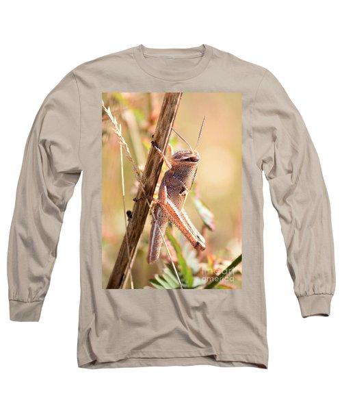 Grasshopper In The Marsh Long Sleeve T-Shirt by Carol Groenen