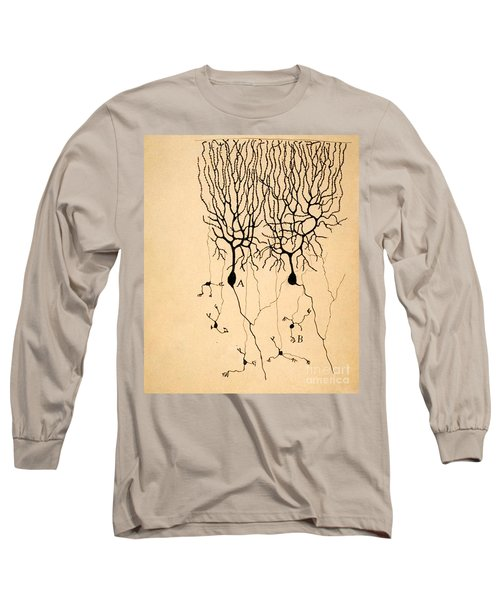 Purkinje Cells By Cajal 1899 Long Sleeve T-Shirt by Science Source