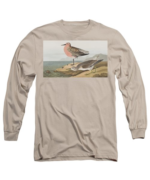Red-breasted Sandpiper  Long Sleeve T-Shirt by John James Audubon
