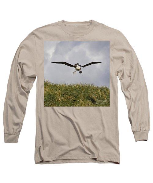 Black-browed Albatross Long Sleeve T-Shirt by Jean-Louis Klein & Marie-Luce Hubert