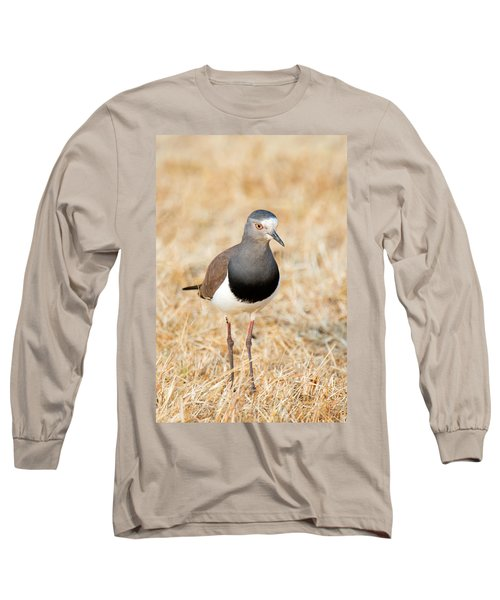 African Wattled Lapwing Vanellus Long Sleeve T-Shirt by Panoramic Images