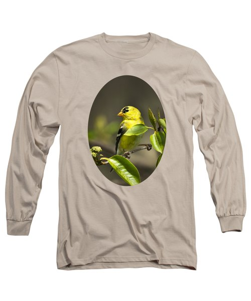 American Goldfinch On Branch Long Sleeve T-Shirt by Christina Rollo