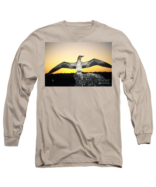 Booby At Sunset Long Sleeve T-Shirt by Dave Fleetham - Printscapes