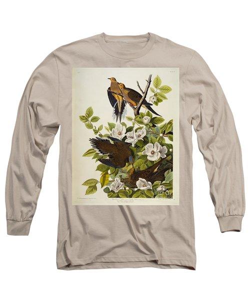 Carolina Turtledove Long Sleeve T-Shirt by John James Audubon