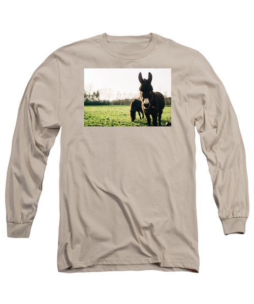 Donkey And Pony Long Sleeve T-Shirt by Pati Photography